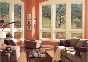 home-window-woodinville-wa